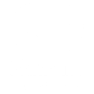Marketing Gubernamental